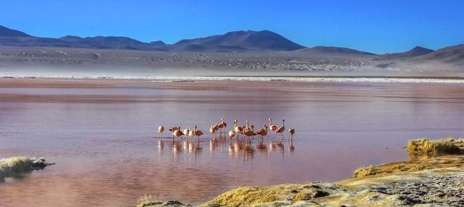 patagonia-banner