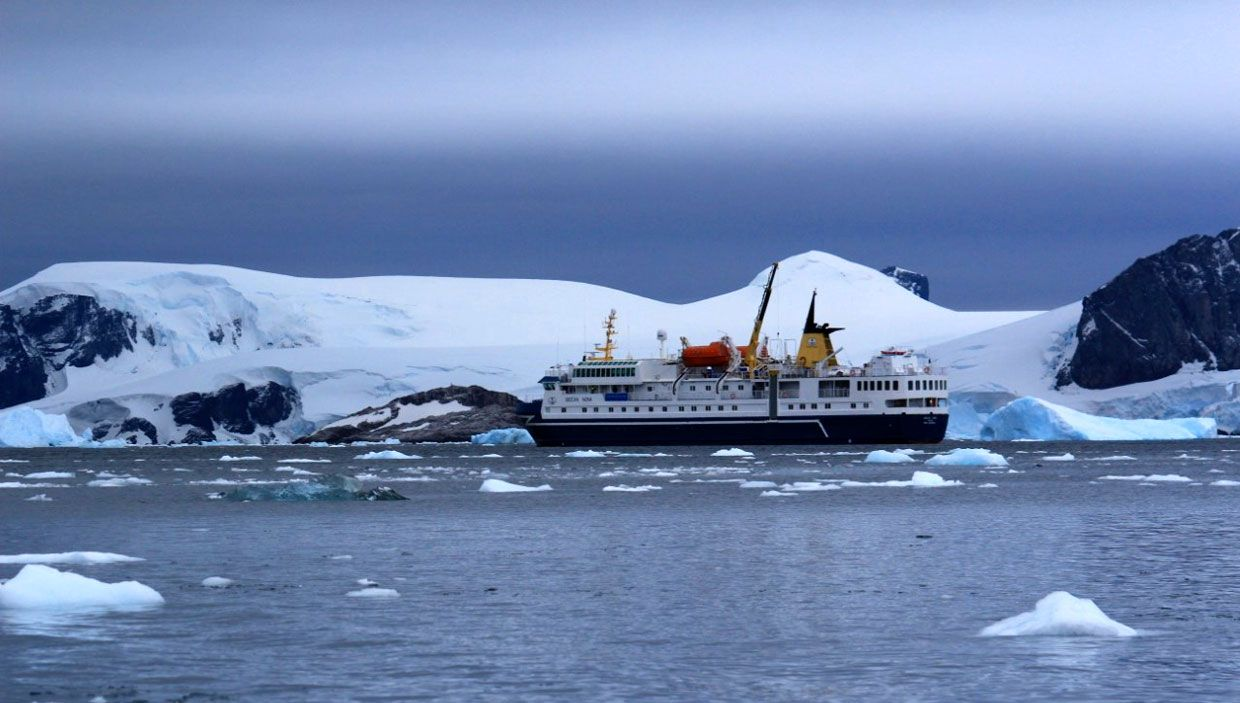 My top 10 reasons why everyone needs to visit antarctica for How to visit antarctica