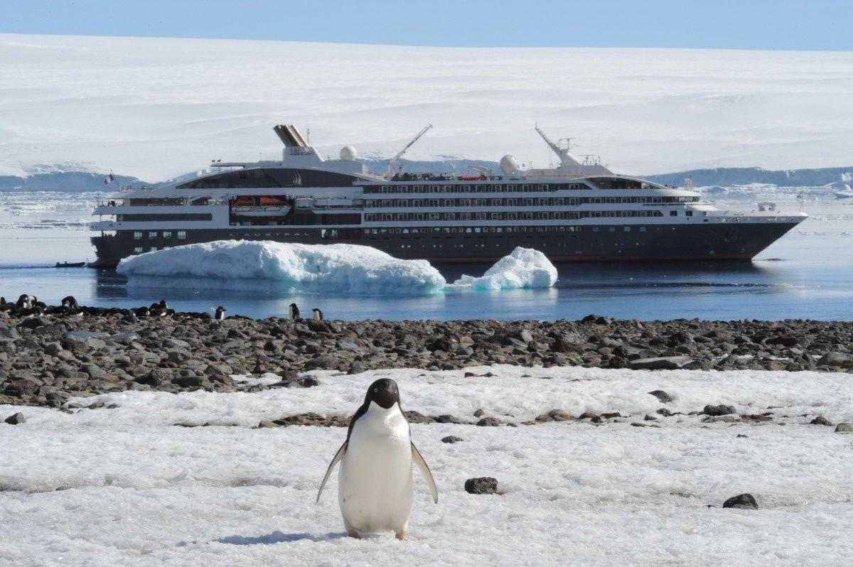 Last Minute Luxury Antarctica