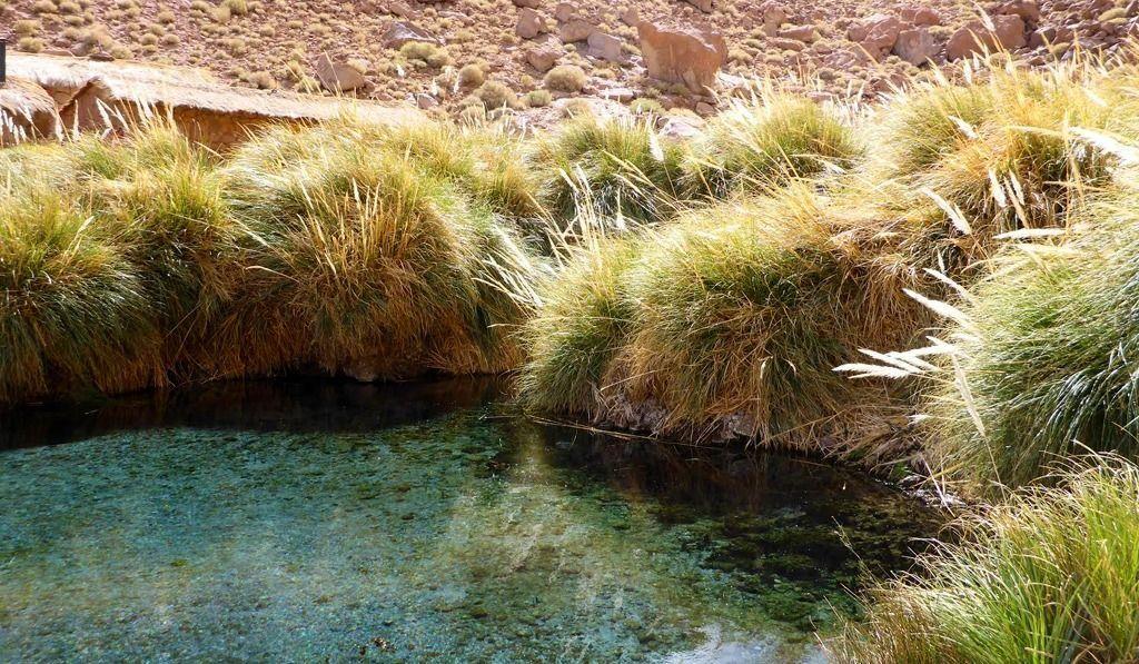 Atacama-blog2