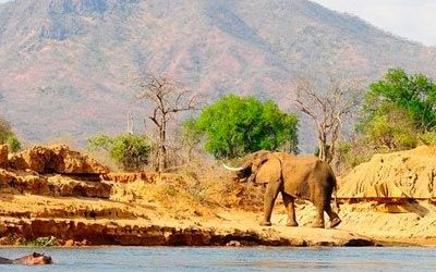 Zambia Safari tours and Holidays