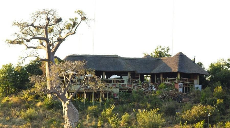 African safaris, tours and packages