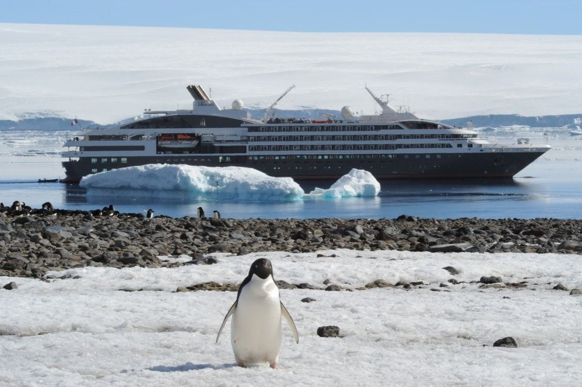 Last Minute Luxury Antarctica