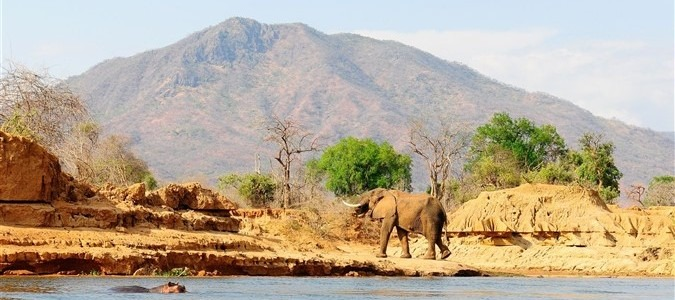 Zambia Tours