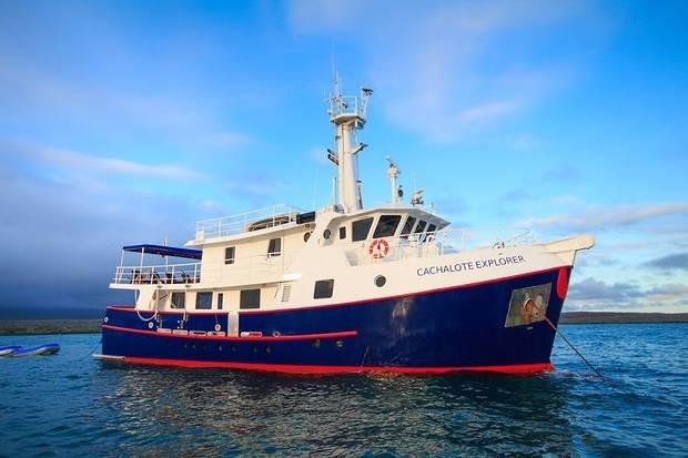 Cachalote Explorer
